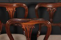 Set of 6 Rosewood Kidney Back Dining Chairs (3 of 14)