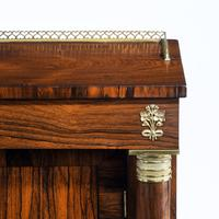 Pair of Late Regency Rosewood Side Cabinets (7 of 8)