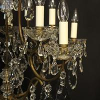 French Gilded Birdcage 11 Light Crystal Antique Chandelier (9 of 10)