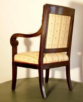 Mahogany Napoleonic and heavily mounted brass  upholstered armchair. (6 of 6)