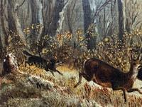 'Chasing The Deer' Beautiful 19th Century Game Hunting Moonlit Landscape Oil Painting (9 of 14)