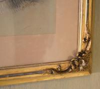 Superb Victorian 'grumpy Cat' Pastel Drawing (10 of 10)