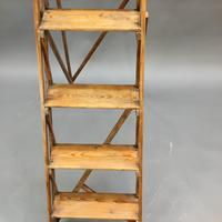Early 20th Century Hetherley Step Ladder (8 of 11)