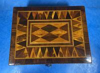 George III Rosewood Tunbridge Ware Box with Specimen Wood Inlay (4 of 15)