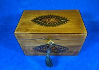 Late 18th Century Fruitwood and Applewood Twin Tea Caddy (3 of 21)