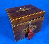 18th Century Mahogany  Shell Inlaid Tea Caddy (3 of 18)