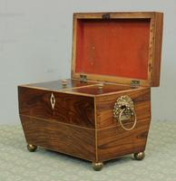 Antique Rosewood Tea Caddy (4 of 15)