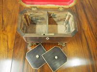 George IV Inlaid Rosewood Tea Caddy (5 of 9)