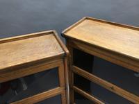 Globe Wernicke Type Bookcase (10 of 13)