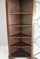 Antique Mahogany Astragal Glazed Cabinet (6 of 12)