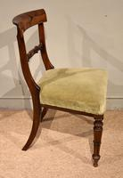 Set of Six William IV Rosewood Dining Chairs (7 of 8)