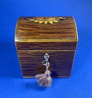 George III Partridge Wood Tea Caddy (8 of 12)
