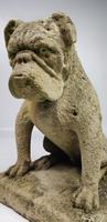 Rare Late 19th Century English Limestone Bulldog (13 of 14)