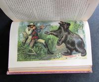 1862 Wild Sports of the World - A Book of Natural History and Adventure by James Greenwood (4 of 6)