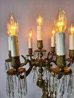 Tall Seven Branch Italian Candelabra Table Lamp c1930 (2 of 7)
