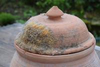 Large Earthenware Lidded Storage Jar (9 of 10)
