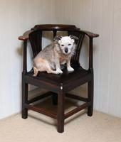 George III Country Elm Corner Chair (5 of 5)