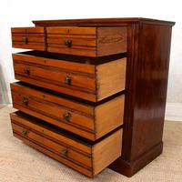 Walnut Chest of Drawers 19th Century (9 of 12)