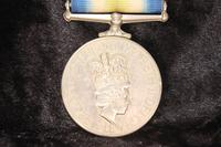 South Atlantic medal with rosette (4 of 9)