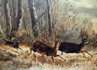 'Chasing The Deer' Beautiful 19th Century Game Hunting Moonlit Landscape Oil Painting (8 of 14)