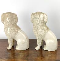 Two Decorative 19th Century Staffordshire Poodles (6 of 9)
