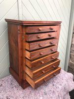 Antique Small Walnut Wellington Collectors Chest (8 of 10)