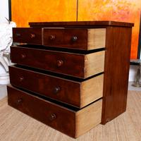 Cuban Mahogany Chest of Drawers 19th Century (10 of 14)