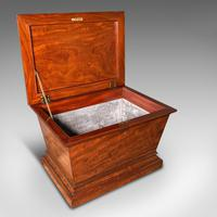Large Antique Sarcophagus Cellarette, English, Mahogany, Wine Cooler, Regency (8 of 12)