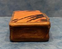 Victorian Horn & Tortoiseshell Snuff Box (7 of 13)