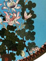 Antique Pair of Japanese Cloisonne Plates, Meiji Period (8 of 12)