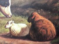 Fine Art English Oil Painting Cattle Cows & Sheep After Thomas Sidney Cooper (21 of 33)