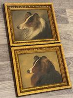 Pair of Scottish 19th Century Oil Paintings Rough Collie Dog Portraits After George Washington Brownlow (9 of 49)
