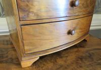 Burr Walnut Miniature Chest of Drawers 20th Century (6 of 6)
