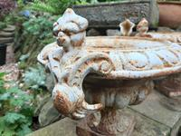 Fine Pair of French Cast-iron Painted Urns (7 of 7)