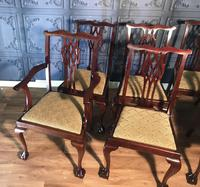 Set of six Edwardian Mahogany Dining Chairs (7 of 11)