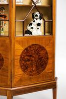 Edwardian Period Mahogany Display Cabinet with Offset Side Panels (6 of 8)