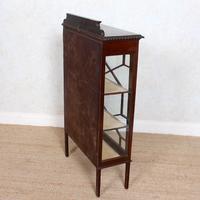 Glazed Bookcase Edwardian Astragal Display Cabinet Mahogany (2 of 11)