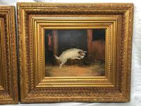 """Pair Victorian 19th Century Sporting Hunting Oil Paintings Terrier Dogs """"Ratting"""" Signed J Langlois (3 of 12)"""