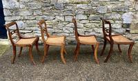 Set of 4 Regency Rosewood Sabre Leg Dining Chairs (8 of 15)