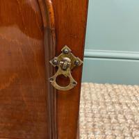 Small Victorian Mahogany Collectors Cabinet (6 of 6)