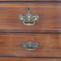 Georgian Mahogany Chest Drawers with Line Inlay on Ogee Feet (3 of 5)