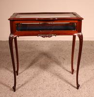 Small Mahogany Showcase Cabinet from Jeweler or Exhibition 19th Century (11 of 12)