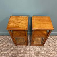 Unusual Pair of Victorian Satinwood Antique Cabinets (3 of 6)
