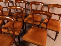 Set of 8 William IV Dining Chairs  Mahogany (10 of 12)