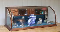 19th Century Counter Top Display Cabinet (8 of 11)