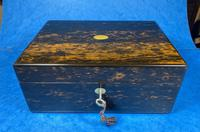 Victorian Coromandel Box with Mother of Pearl Escutcheons (14 of 14)
