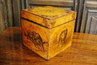 Antique French Tea Caddy Box (5 of 7)