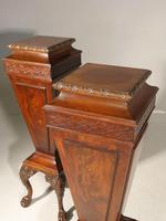 Unusual Pair of Early 20th Century Mahogany Pedestals (2 of 8)