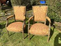 Pair of French Armchairs in Original Paint Finish (4 of 10)