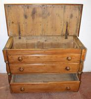 1900s Country Antique Pine Large Mule Chest - Well Polished (2 of 5)